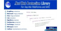 Web .net protection