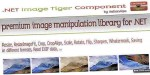 Image .net tiger component