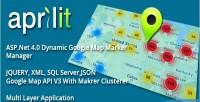 Google .net markers dynamic map