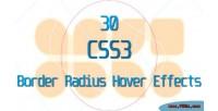 Css3 30 border effects hover radius