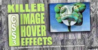 Css3 killer effects hover image