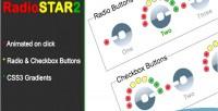 Radio star 2 pure css3 radio theme checkbox and