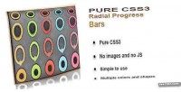 Css3 pure radial bars progress animated