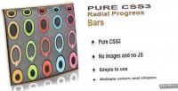 Css3 pure radial bars progress animated