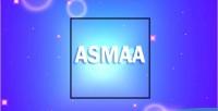 Profile asmaa card is grid profile multipurpose a