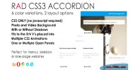 Css3 rad accordion