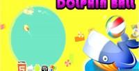 Ball dolphin