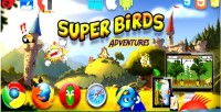 Birds super adventures