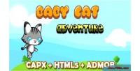 Cat baby adventure