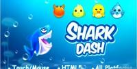 Dash shark