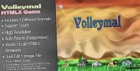 Html5 volleymal sport games