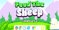 The feed sheep