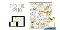 The find game html5 pug