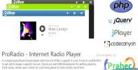 Internet proradio radio player