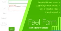 Client feelform validator form side