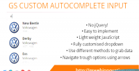 Custom gs autocomplete input
