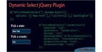 Select dynamic jquery plugin