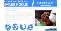 Image focuser highlighter