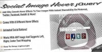 Image social jquery for hover