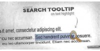 Tooltip search text highlighted for