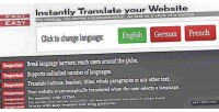 Website instant blog translator