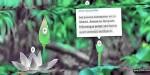 Hotspot jquery slideshow with plugin