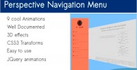 Navigation perspective menu