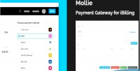 Payment mollie gateway ibilling for plugin