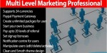 Level multi marketing professional