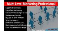 Level multi marketing professional