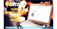 Bitcoin blockchain payments