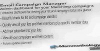 Campaign email manager