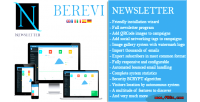 Newsletter berevi script marketing email