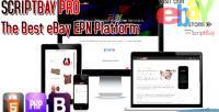 Pro scriptbay minisite seller ebay
