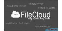 Pro filecloud