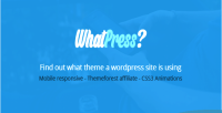 Find what theme a wp site using is find