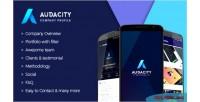 Panel admin app marketing audacity