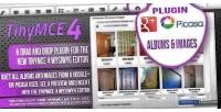 Tinymce 4 plugin picasa images plus google