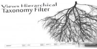 Hierarchical views taxonomy filter