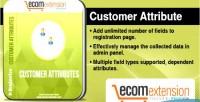 Customer magento attribute extension