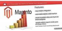 Google pro anaylitcs magento for tools