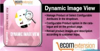 Image dynamic view