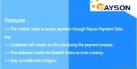 Payment payson 2 magneto integration