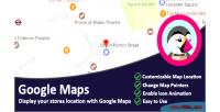 Maps google