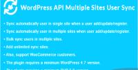 Api wordpress multiple sync user sites