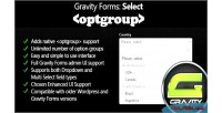 Forms gravity select optgroup