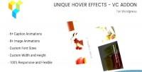 Hover unique addon vc effects