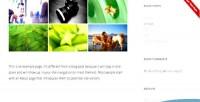 Panel ribbon wordpress plugin