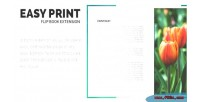 Print easy extension flipbook responsive