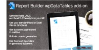 Report builder add on for wpdatatables generate word docx & documen xlsx excel